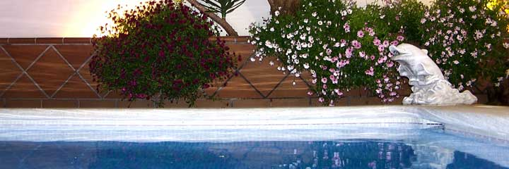 Divisi n piscinas la madrile a la madrile a perchan s a for Piscina alfafar